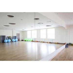 Acrylic Gym/Dance Studio Mirrors