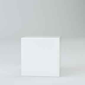 Acrylic Plinths